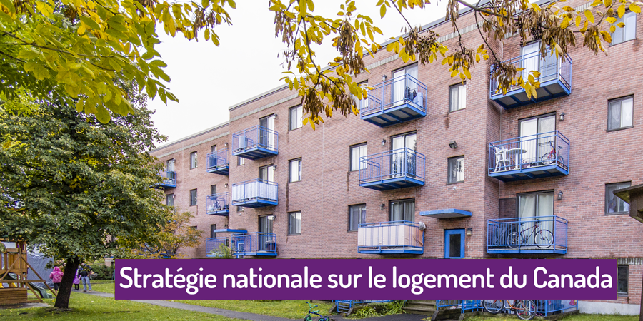 Large reaction strategie logement