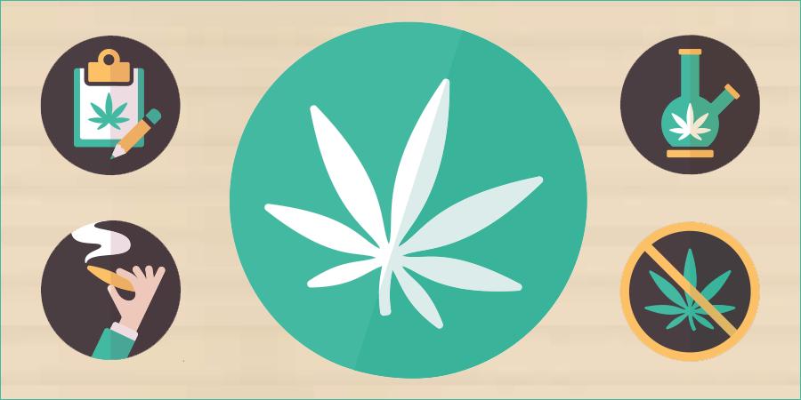 Large cannabis